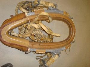 Kraftiga dragok för häst