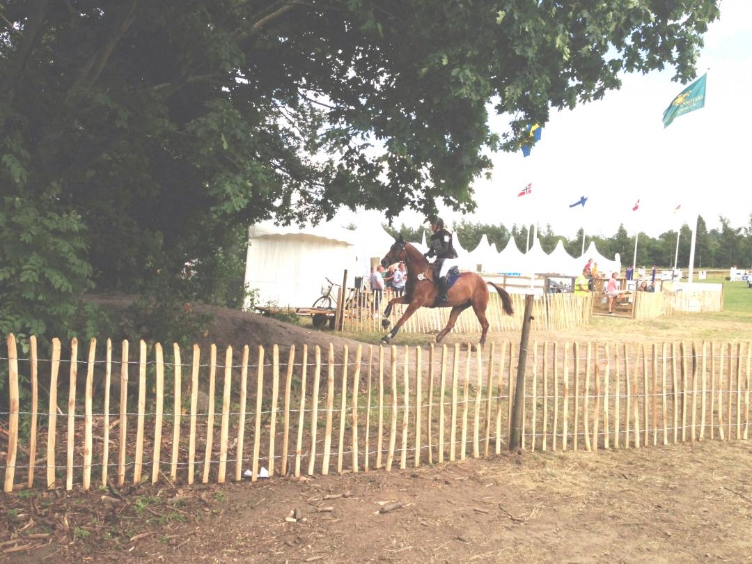 kastanjestaket engelska staket trädgårdsstaket spjälstaket pinnastaket