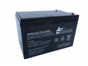 A1 Decoys Energy Batteri 12V 12Ah