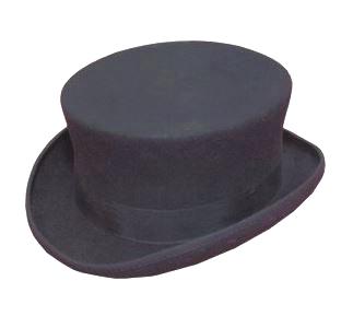 Hawkins Dressage Hat