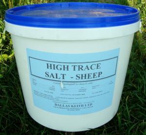 Saltsten med mineraler i hink 20 kg