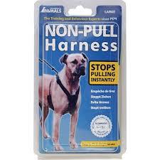 Halti Non Pull Harnes Large