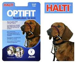 Halti Opti-Fit Small