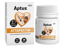 Aptus Attapectin tabl. 30st