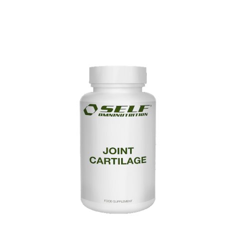 SELF: JOINT CARTILAGE - 120 KAPSLAR
