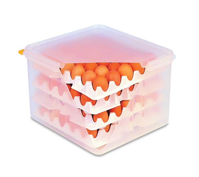 Eggs box gn2/3 w/8 trays white