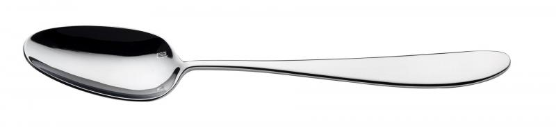 Anzo Dessert Spoon12
