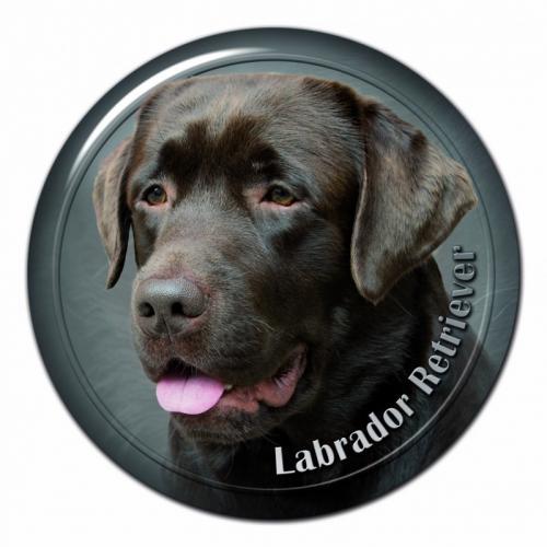 Dekaler med Labrador