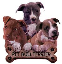 T-shirt med American Pit Bull Terrier