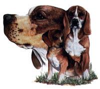 T-shirt med Beagle