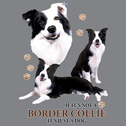 Tygkasse med Border Collie