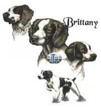 T-shirt med Breton
