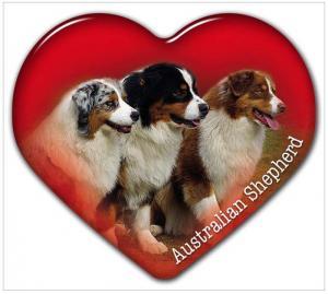 Dekal med Australian Shepherd
