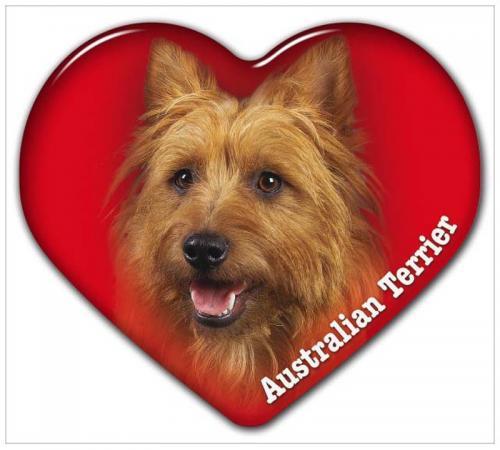 Dekal med Australisk Terrier