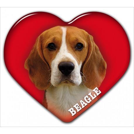 Dekal med Beagle