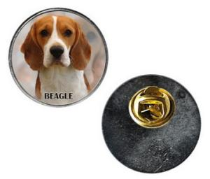 Pin med Beagle