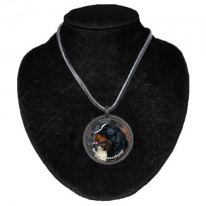 Halsband med Berner Sennenhund