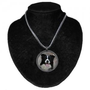 Halsband med Border Collie