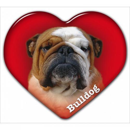 Dekal med Engelsk Bulldogg