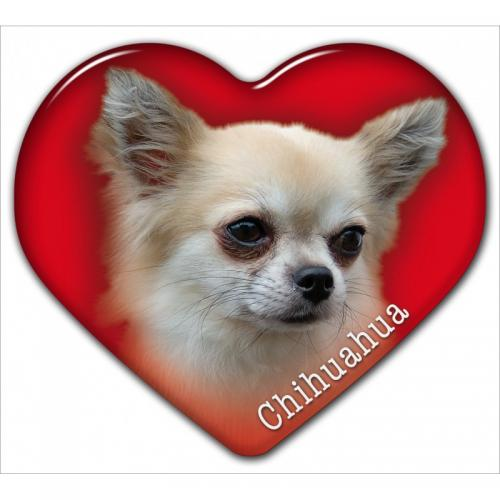 Dekal med Chihuahua
