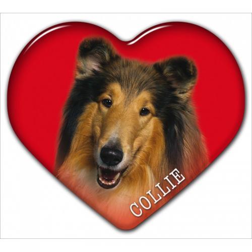 Dekal med Collie