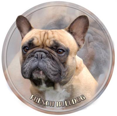 Dekaler med Fransk Bulldogg