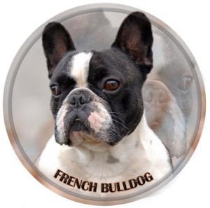 Dekal med Fransk Bulldogg
