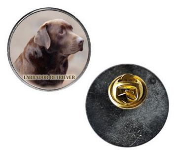 Pin med Labrador