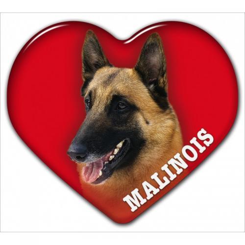 Dekal med Belgisk Vallhund Malinois
