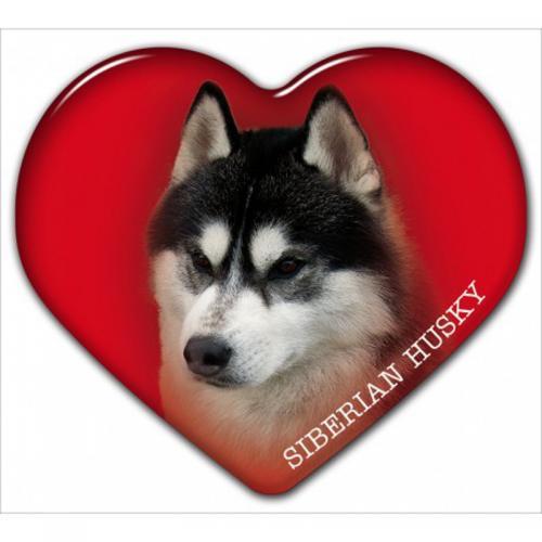 Dekal med Siberian Husky