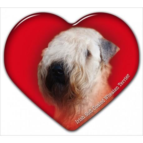 Dekal med Irish Softcoated Wheaten Terrier