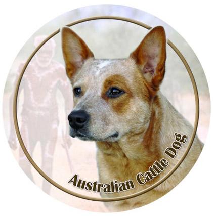 Dekal med Australian Cattle Dog