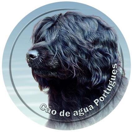 Dekal med Portugisisk Vattenhund