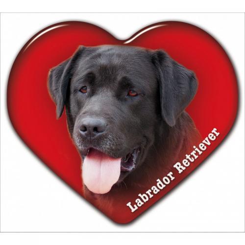 Dekal med Labrador