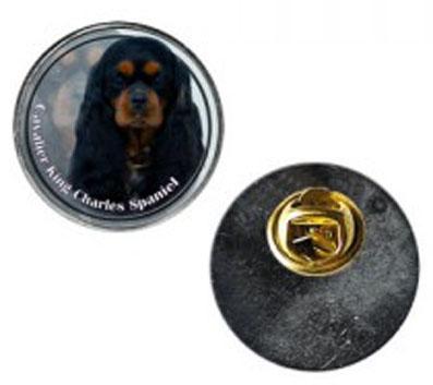 Pin med Cavalier King Charles