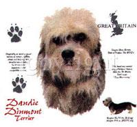 T-shirt med Dandie Dinmont Terrier