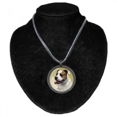 Halsband med Amerikansk Bulldog
