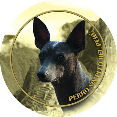 Dekaler med Perro Sin Pelo del Perú