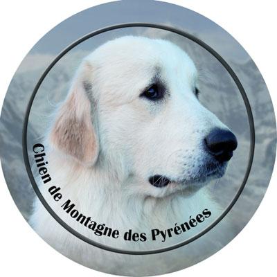 Dekal med Pyreneerhund
