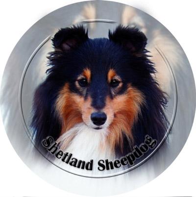 Dekaler med Shetland Sheepdog