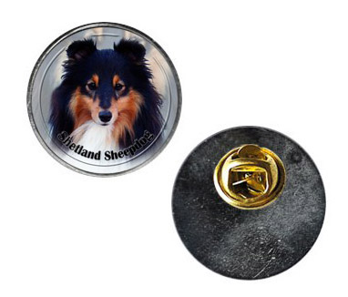 Pin med Shetland Sheepdog