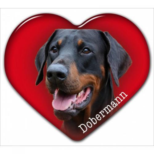 Dekal med Dobermann