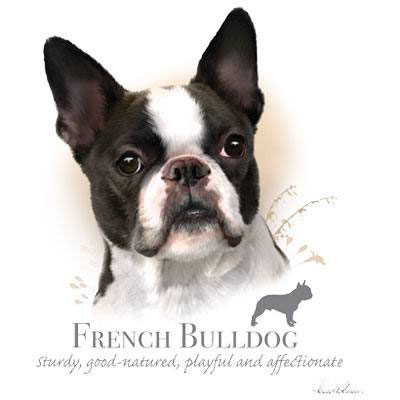 T-shirt i barnstorlek med Fransk Bulldog