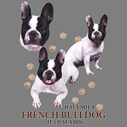 Huvjacka med Fransk Bulldogg