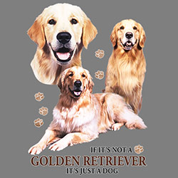 Tygkasse med Golden Retriever