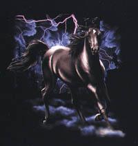 T-shirt i barnstorlek med hästmotiv