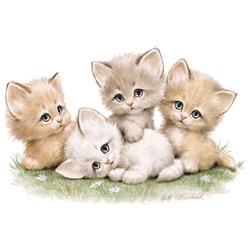 T-shirt i barnstorlek med ett kattmotiv