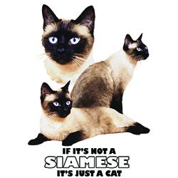 T-shirt med Siames