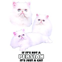 T-shirt med Perser