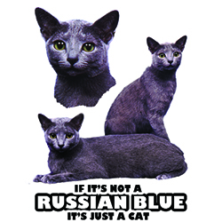 T-shirt med Russian Blue
